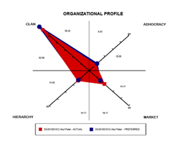 Organizational-Profile1