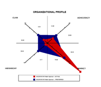 Organizational-Profile-2