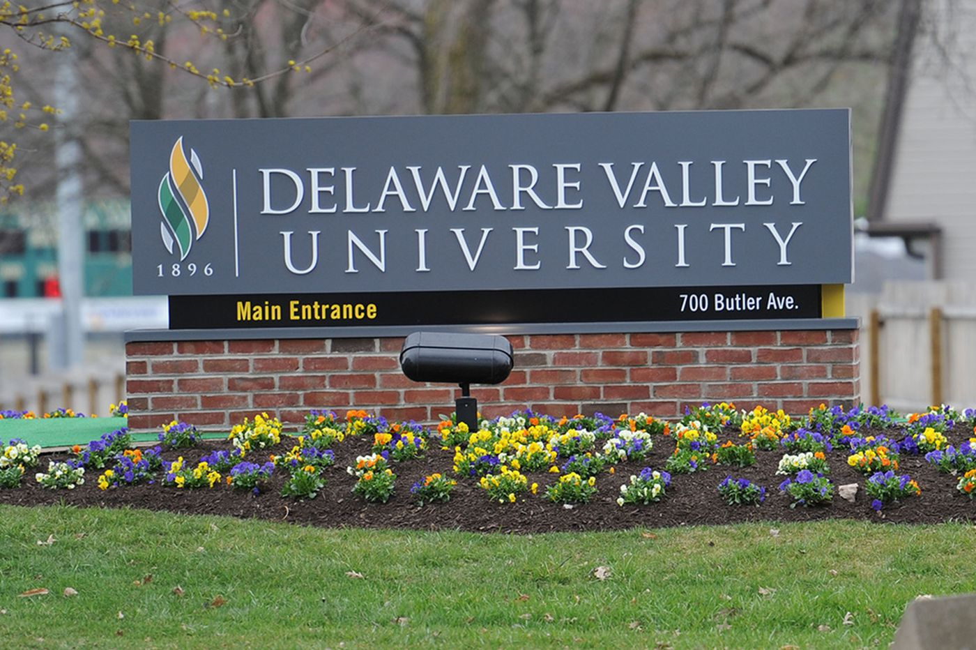 How A Blue Ocean Strategy® Is Right for Delaware Valley University