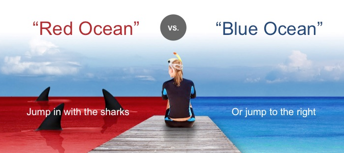 How To Find Your Blue Ocean Strategy®: Step 4