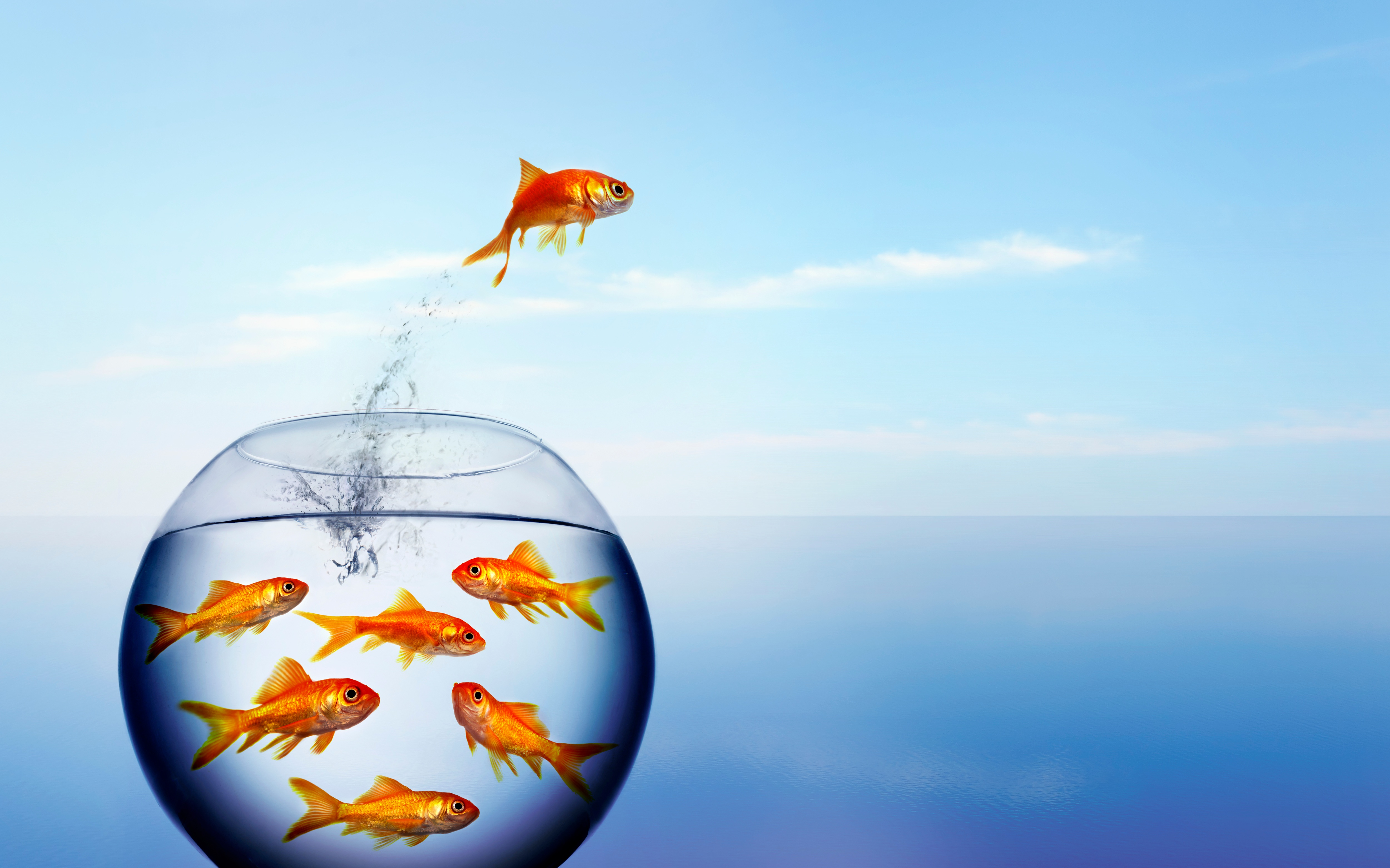 How Blue Ocean Strategy®Helps You Find (and Convert) Nonusers