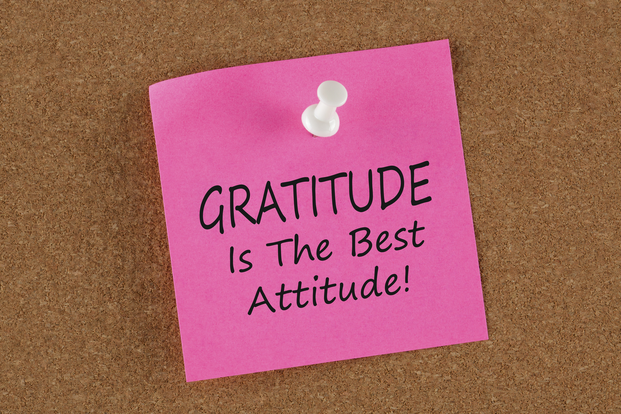 Time to Add Gratitude to Your Life—And Your Company's Culture!
